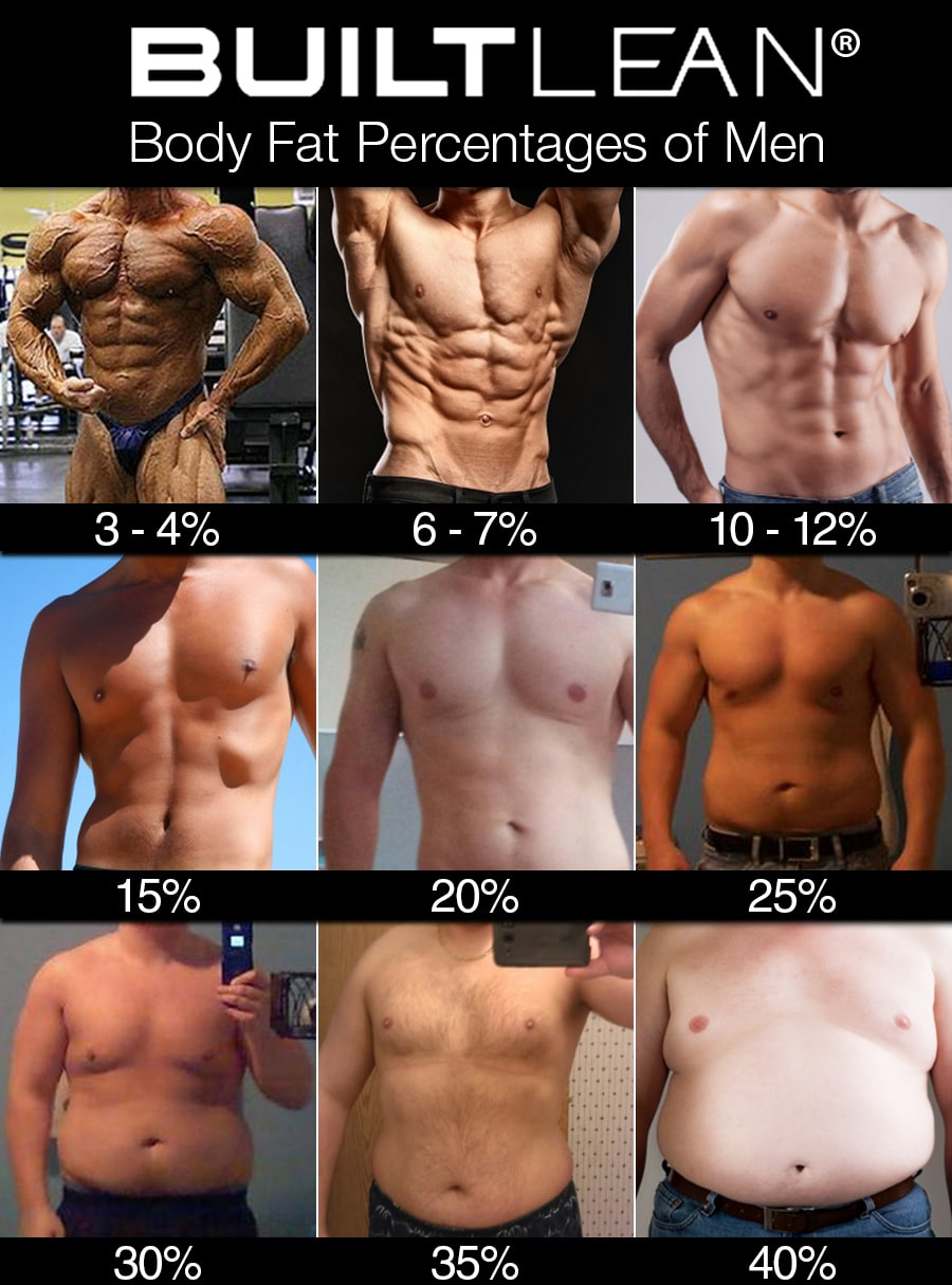 Body fat percentages in men images